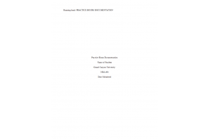 NRS 490 Topic 10 Assignment; Practice Hours Documentation (Version 1): Spring 2020