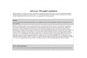 NRS 440VN Topic 4 Assignment; Advocacy Through Legislation; Using Template: Summer 2021