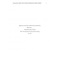 NR 501 Week 6 Assignment; Application of Nursing Theory (v2) → Fall 2017